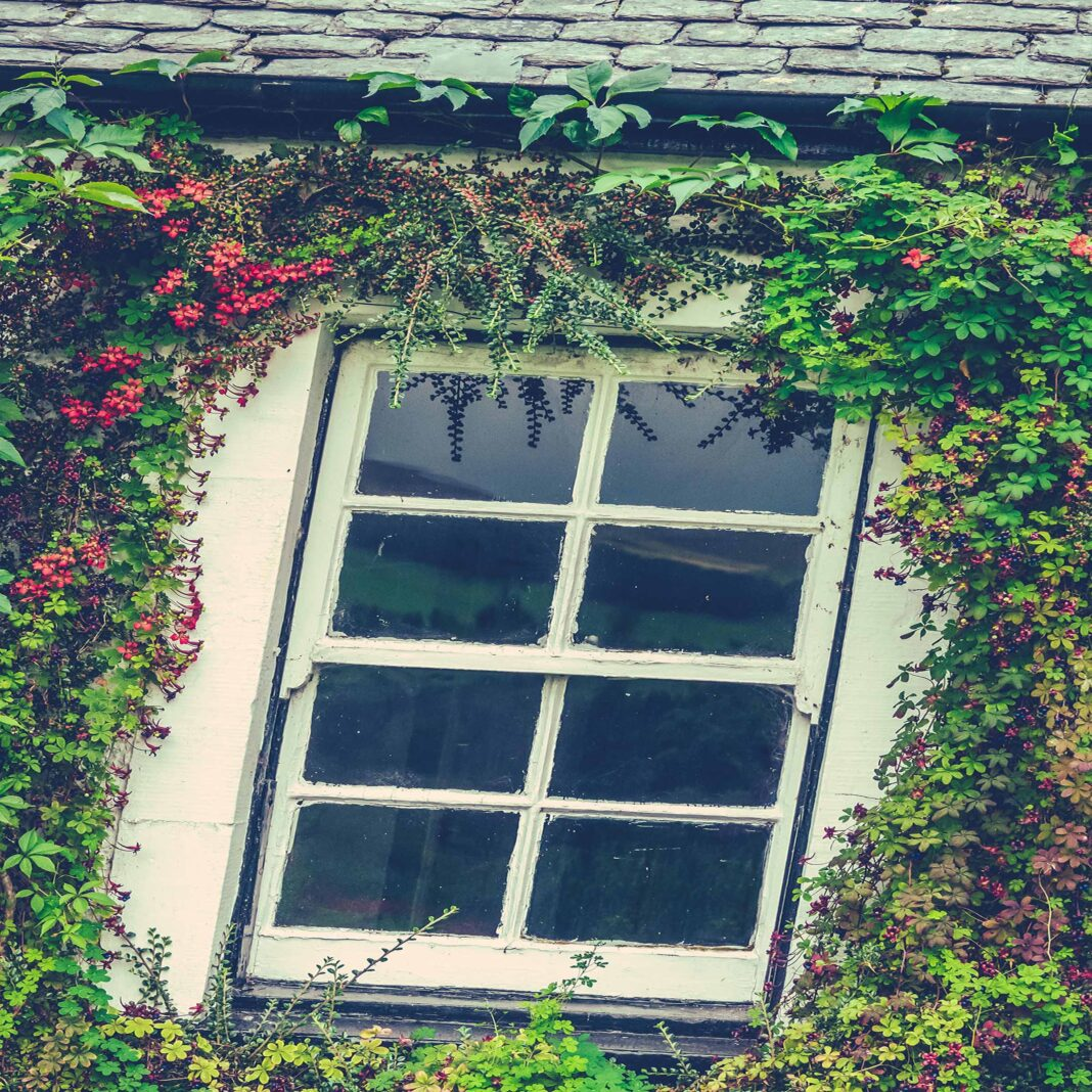 government grants for window replacement